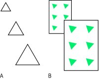 Fig. P6 Examples of monocular cues to depth perception; A, relative size; B, interposition and relative size