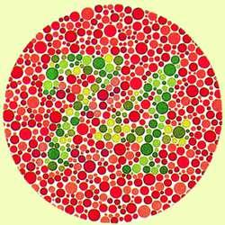 Color Blindness Definition Of Color Blindness By Medical