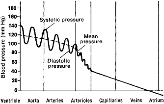 how to get diastolic from systolic and mean