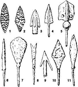 Neolithic Tools and Weapons http://encyclopedia2.thefreedictionary.com/Arrow+(weapon)