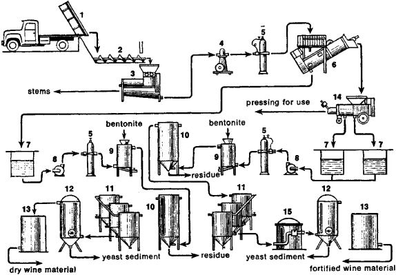 Wine-Making | Article about Wine-Making by The Free Dictionary