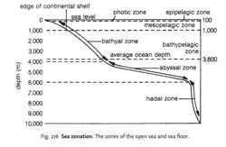 Sea zonation