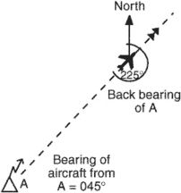 back beam