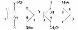 β- N -acetyl- D -glucosamine unit of chitin