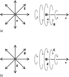 Electric (E) and magnetic (B) field lines generated by monopoles and by their motion with velocity v