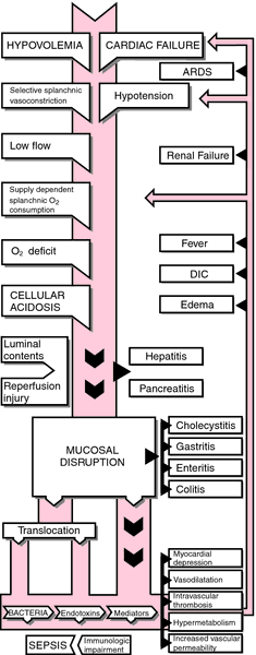 multiple organ failure During sepsis, systemic hypotension, disturbed perfusion of the microcirculation, and direct tissue-toxicity caused by inflammatory immune reaction can occur and contribute to organ failure the failure of two or more vital organ systems is termed multi-organ dysfunction syndrome (mods) and resembles a very critical.