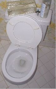 Flush Toilet Washout Wc Pans | RM.