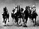 thoroughbred race - a race between thoroughbred horses