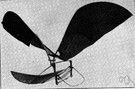 orthopter - heavier-than-air craft that is propelled by the flapping of wings