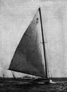 catboat - a sailboat with a single mast set far forward