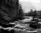 freshet - the occurrence of a water flow resulting from sudden rain or melting snow