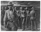 chain gang - a gang of convicts chained together