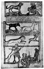 bestiary - a medieval book (usually illustrated) with allegorical and amusing descriptions of real and fabled animals