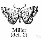 Moth miller - any of various moths that have powdery wings