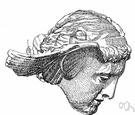 Hypnos - (Greek mythology) the Greek god of sleep