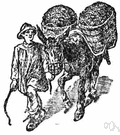 pannier - a large basket (usually one of a pair) carried by a beast of burden or on by a person