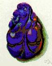 lazuli - an azure blue semiprecious stone
