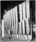 organ stop - a graduated set of organ pipes of like tone quality