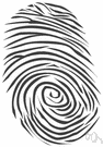 fingerprint - a print made by an impression of the ridges in the skin of a finger
