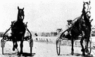 pacer - a horse used to set the pace in racing