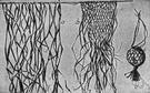 raffia - leaf fibers of the raffia palm tree