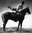 dismount - the act of dismounting (a horse or bike etc.)