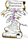 matrimonial law - that branch of jurisprudence that studies the laws governing matrimony