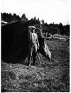 normadic herding sami essay