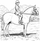 habit - attire that is typically worn by a horseback rider (especially a woman's attire)