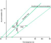 Fig. Z1 Zone of clear, single, binocular vision (NRC, negative relative convergence; PRC, positive relative convergence; NRA, negative relative accommodation; PRA, positive relative accommodation; BI, base-in prism; BO, base-out prism)