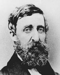 Henry David Thoreau. LIBRARY OF CONGRESS