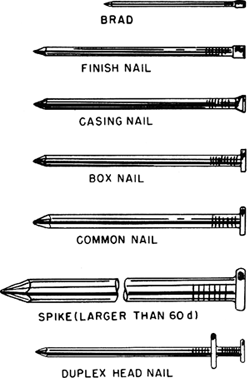 Nail Article About Nail By The Free Dictionary