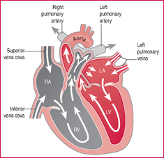 Heart score definition of heart score by medical dictionary ccuart Image collections