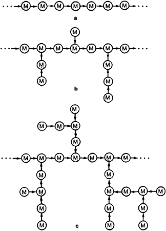 Structural Polysaccharide Article About Structural Polysaccharide