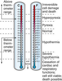 What Is A Normal Temperature For An Adult 113