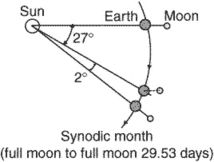 synodic month
