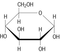 Image result for alpha glucose structure