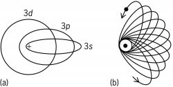 Possible elliptical orbits, according to the Bohr- Sommerfeld theory