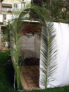 Sukkah in Herzliya