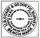 benchmark - a surveyor's mark on a permanent object of predetermined position and elevation used as a reference point