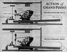piano action - action consisting of a system of levers that move a felt hammer to strike the strings when a key is depressed