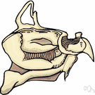 nasal cavity - either of the two cavities lying between the floor of the cranium and the roof of the mouth and extending from the face to the pharynx