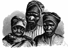 Hottentot - any of the Khoisan languages spoken by the pastoral people of Namibia and South Africa