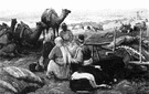 Saame - the language of nomadic Lapps in northern Scandinavia and the Kola Peninsula