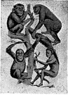 hominid - a primate of the family Hominidae