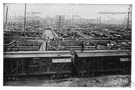 cattle car - a freight car for transporting cattle