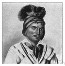 Seminole - a member of the Muskhogean people who moved into Florida in the 18th century