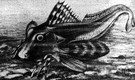 Triglidae - in some classifications restricted to the gurnards and subdivided into the subfamilies Triglinae (true sea robins) and Peristediinae (armored sea robins)