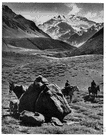Aconcagua - the highest mountain in the western hemisphere