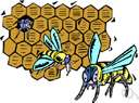 honeycomb - a framework of hexagonal cells resembling the honeycomb built by bees